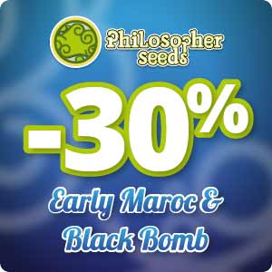 Promo Philosopher Seeds